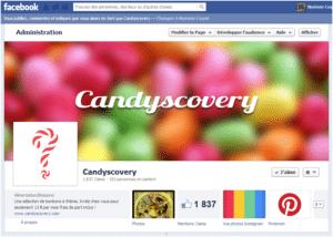 Facebook, Twitter, Pinterest : retour d'expérience d'un site e-commerce