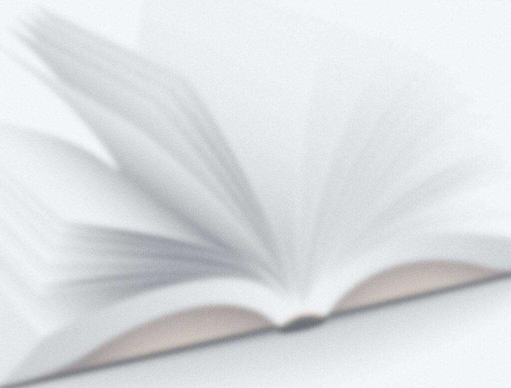 Le Livre Blanc Conseils De Redaction