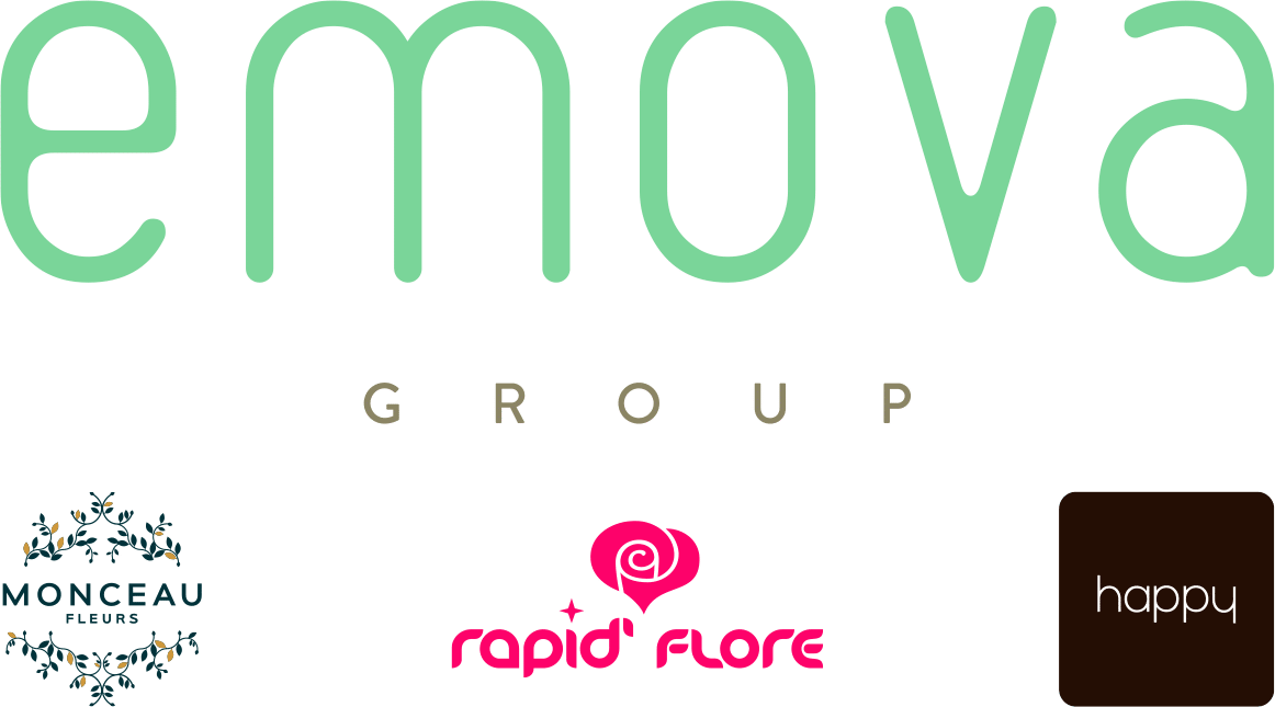 Le Logo d'Emova Group
