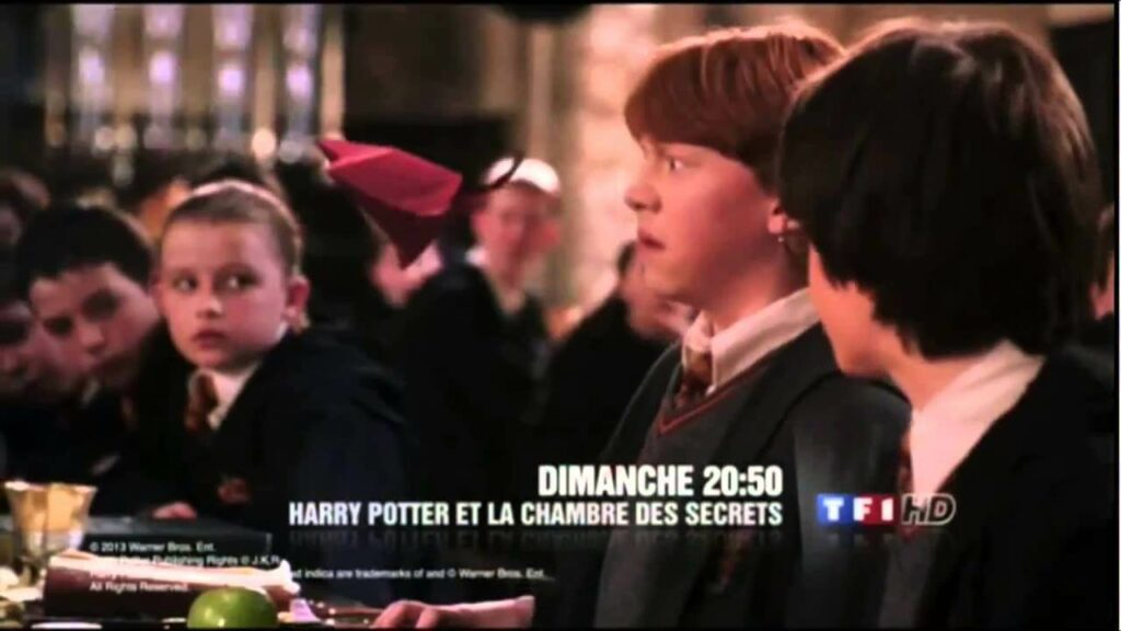 Harry Potter sur TF1