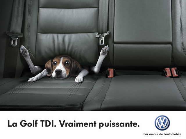 ALFA-ROMEO et Régie RENAULT Volkswagen-publicit%C3%A9-chien