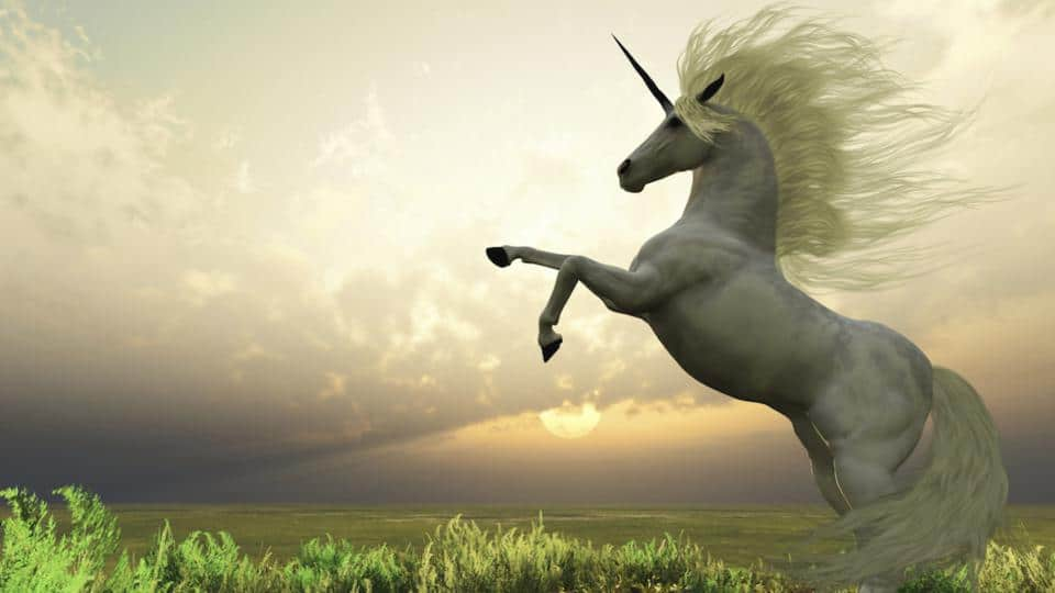 unicorn-960x540