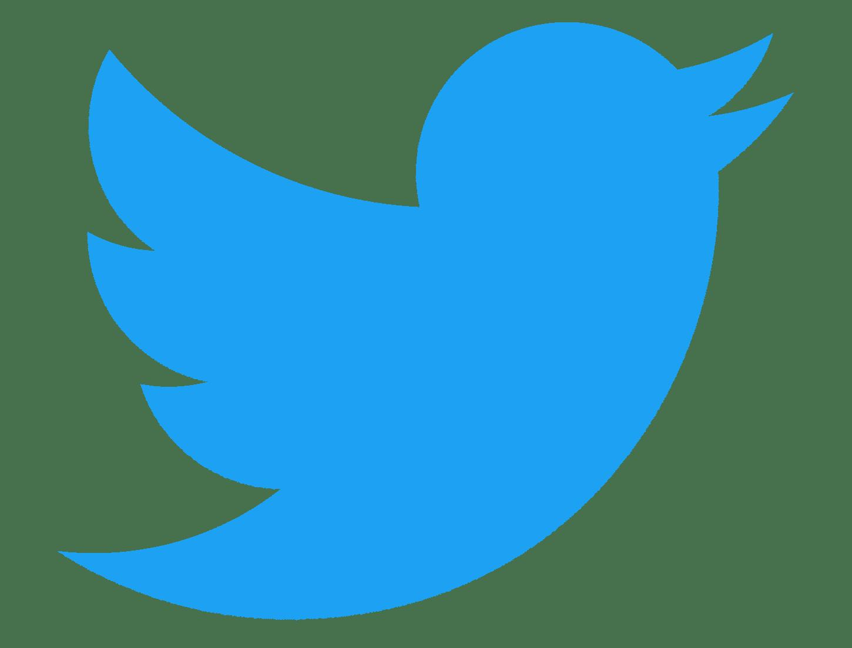 """Résultat de recherche d'images pour """"logo twitter"""""""