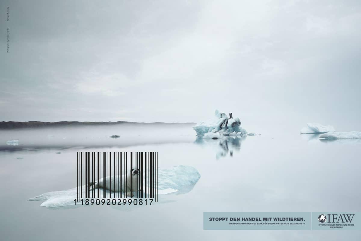 Les meilleures campagnes pour la protection animale
