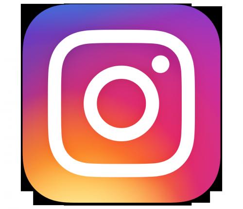 Le Logo Instagram