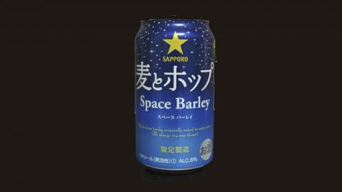 Space Barley logo