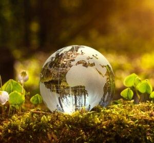 L'éco-responsabilité, un nouvel appât pour les marques ?