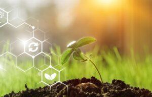 Le secteur agroalimentaire à l'épreuve de la transformation digitale